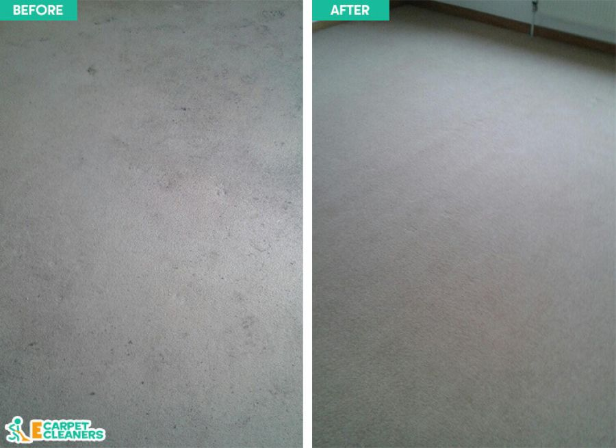 Professional Carpet Cleaners in Kingston