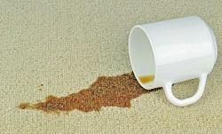 steam carpet cleaner ha1