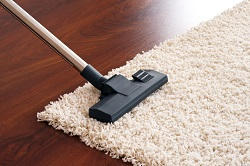 deep carpet cleaning in waterloo