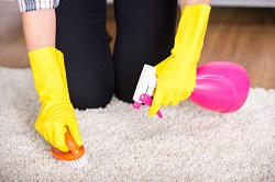 wc1 carpet cleaning companies wc2
