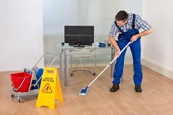 w2 carpet cleaning quotes in paddington